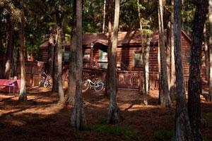 cabin-woods-fort-wilderness