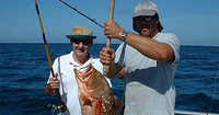 clearwater-beach-day-trip-deep-sea-fishing