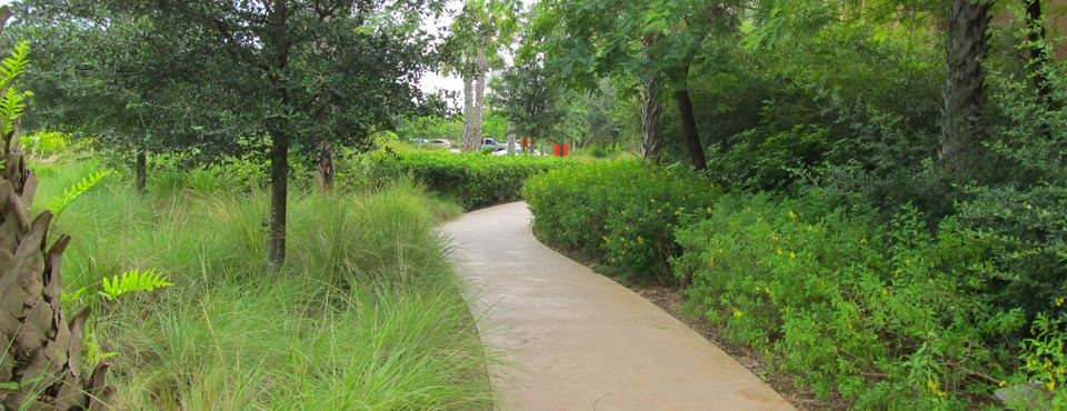View of a walking trail through greenery at the Disney Animal Kingdom Lodge at Disney World