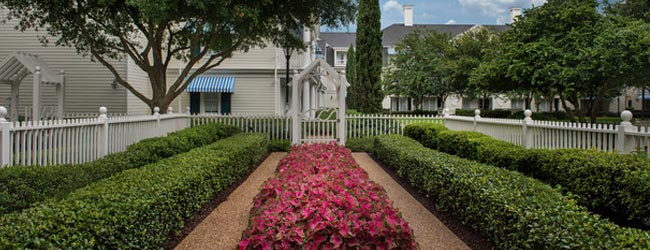 View of the Gardens in front of the Garden Cottages at Disney Boardwalk Inn in Disney World 960