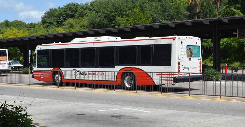 disney-bus-transportation-960x500