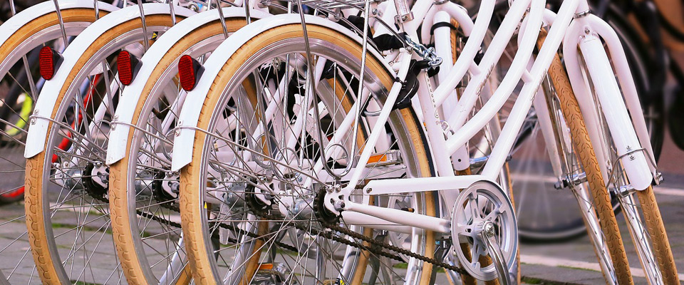 View of a bicycles grouped together