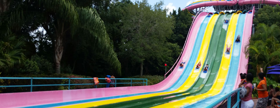 Watching the 6 lane Racing Slide at Aquatica from the Bottom Orlando wide