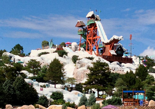 Side View of the Amazing Summit Plummet Water Slide at Blizzard Beach