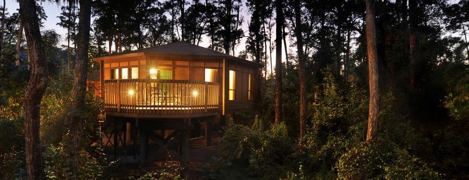 Treehouse Villas At Disney Part - 17: Disney Saratoga Springs Resort Address